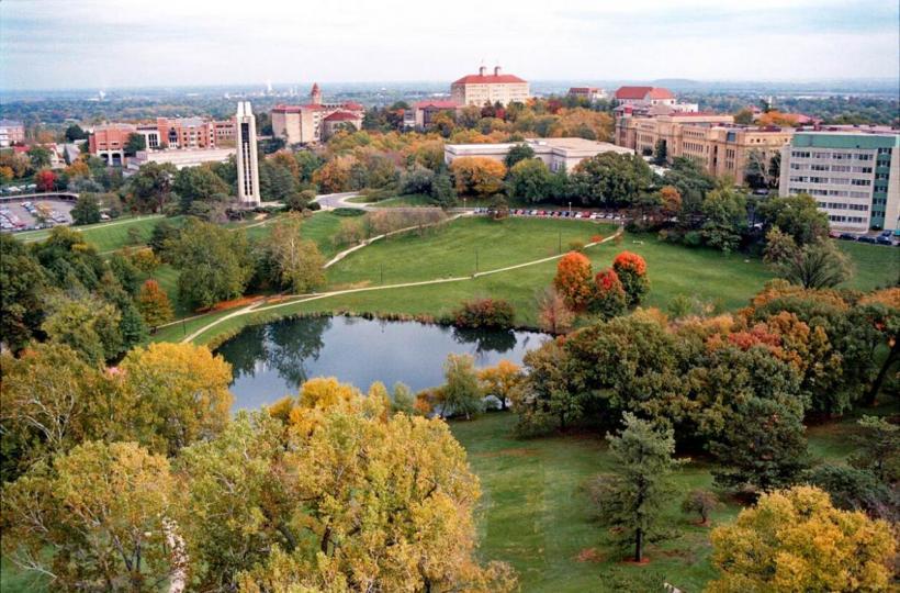 Single Rose Wallpaper Hd College Right University Of Kansas