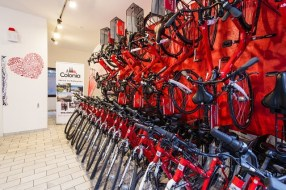 Köln Fahrradtour