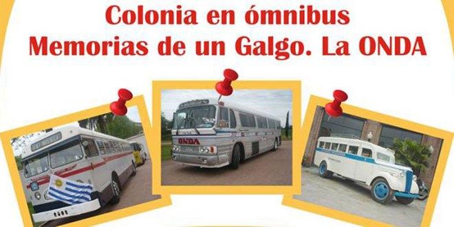 colonia-en-omnibus-memorias-de-un-galgo-la-onda