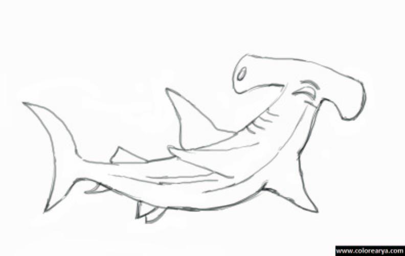 Dibujos Para Colorear Tiburon Martillo - Auto Electrical Wiring Diagram