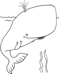 Coloriage Baleine A Imprimer Gratuit.Coloriage Baleine A Imprimer Gratuit Coloriage Baleine Facile