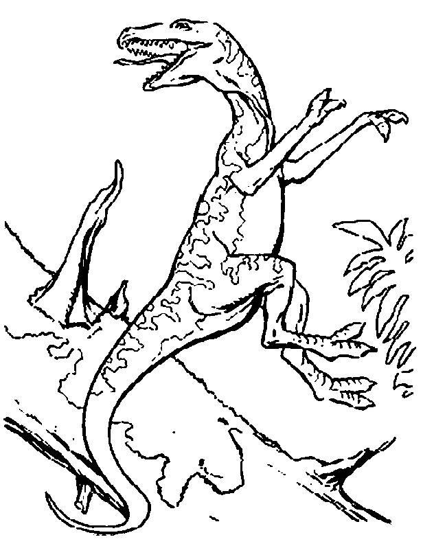 Coloriage Dinosaure Carnivore.Coloriage De Dinosaure Carnivore Auto Electrical Wiring Diagram