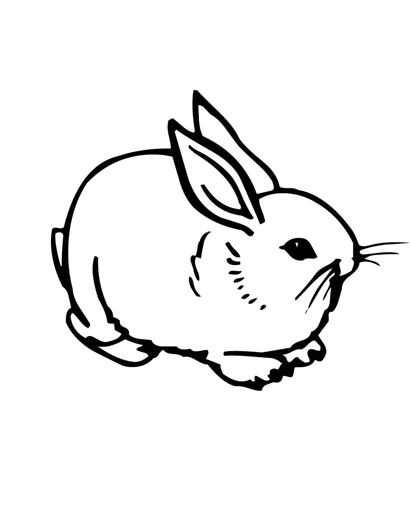 coloring pages rabbit