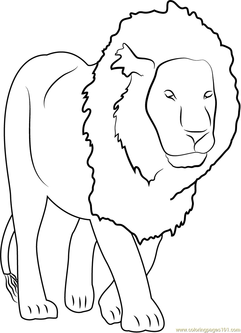 lion coloring page free