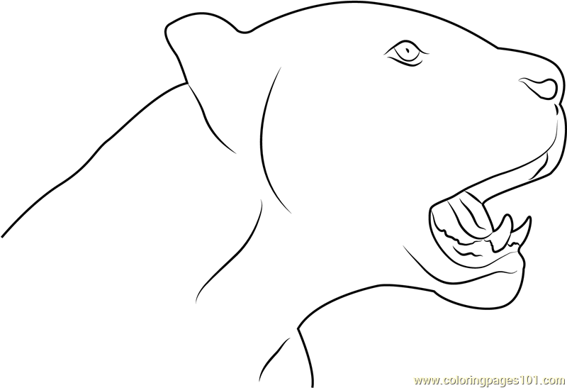 Black Panther Face Coloring Page Free Panther Coloring