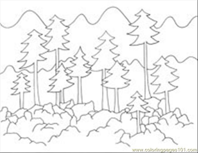 Foresttrees Coloring Page - Free Forest Coloring Pages