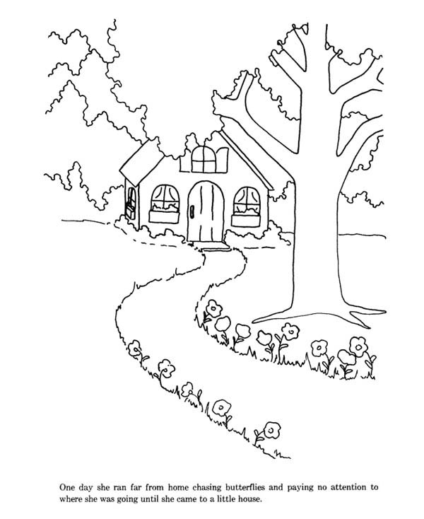 House Near Forest Coloring Page  Coloring Sky