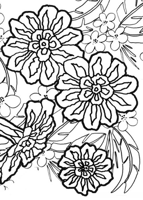 clove pink auto electrical wiring diagramcarnation flower bouquet coloring page carnation flower