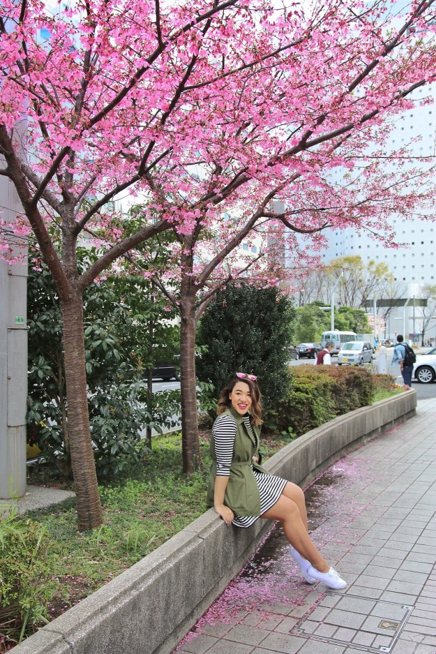 cherry blossoms cherry blossoms japan japan cherry blossom cherry blossom season japan visit japan cherry blossoms colormecourtney color me courtney colormecourtney.com @colormecourtney color me courtney instagram color me courtney blog black fashion bloggers new york city fashion blogger NYC fashion blogger nyc fashion blogger new york juliah engle fashion blog african american fashion blogger vogue fashion pinterest fashion street style blogger style what bloggers wear best fashion bloggers rach martino fashion bloggers julia hengle gal meets glam with love from kat bloggers to follow taylor swift style zooey deschanel style taylor swift fashion zooey deschanel fashion amber filler barefoot blonde the best fashion bloggers best fashion bloggers new york pink peonies rachel parcell fun fashion blogger kate spade fashion blogger stripe fashion blogger polka dot fashion bloggers happy fashion blogger what to wear spring fashion spring style spring outfits spring style guide spring styles spring dresses spring dress eliza j dress gingham dress pink gingham dress checkered dress checkered dress eliza j dresses gingham dress checkered dress check print dress floral dress ted baker dress ted baker floral dress bird dress eliza j floral dress hazy floral dress stop motion video stop motion stop motion spring video target spring commercial spring ad spring style spring spring spring spring fashion blogger japan harajuku explore japan japan travel travel to japan japan japan harajuku keds how to wear keds keds style keds fashion keds keds and dresses stripe dress kate spade stripe dress mint dress mint keds brook green keds zappos wear keds keds taylor swift keds