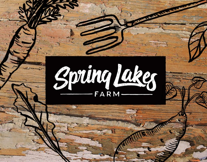 Spring Lakes Farm logo, website and packaging design by Tegan Swyny of Colour Cult Graphic Design, Brisbane.