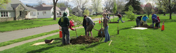 Recreation and Parks Volunteering Opportunities