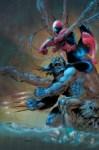 spider-man wolverine 001