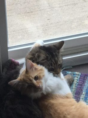 They love each other
