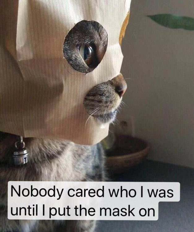 nobody cared who I was until I put the mask on