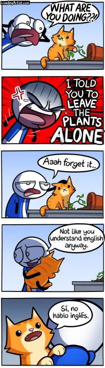 leave this plant alone