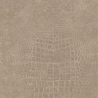 G67503 | Crocodile Skin | Commercial Wall Decor