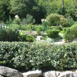 photo-jardins-compagnons (17)