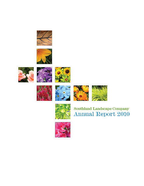 The 8 Best Annual Report Covers