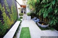 REAL BACKYARD: Inner city courtyard garden design ...