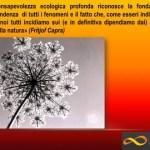 Complexity Events – Vita e Natura. Una visione sistemica