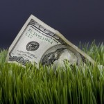Cash in the grass with room for your type.