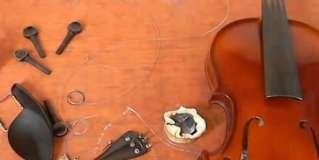 Montar un violín: Cómo hacerlo, paso a paso – Videotutorial