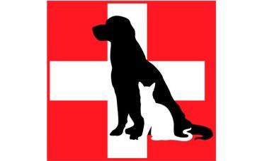 Servizio veterinario: reperibilità nel mese di novembre