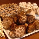 Setas Asian_mushrooms2