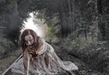 Generic Female Zombie, Pixabay