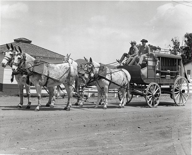 CVD Stagecoach Race