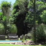 New Listing – The Pecan Tree Guest House Conference Venue in Bryanston, Johannesburg