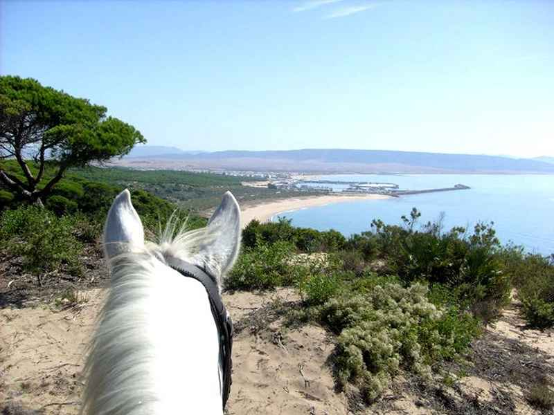 horseriding on the beach in Spain