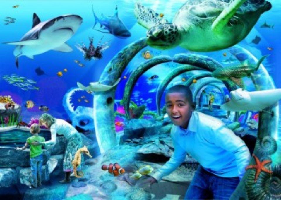 3d Tunnel Wallpaper Sea Life London Aquarium Connect And Do