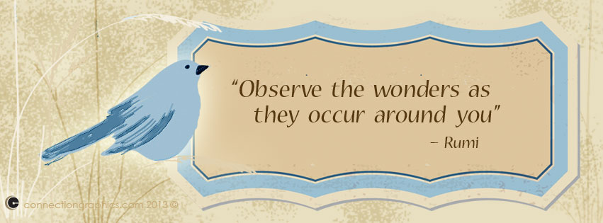 Observe the wonders as they occur around you - Rumi quote Blue - print divorce papers