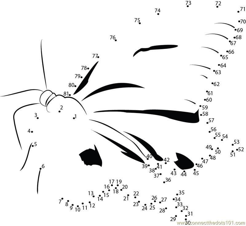 Sweet Butterfly dot to dot printable worksheet - Connect The Dots