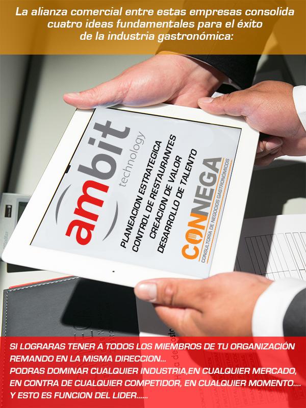 pagina_ambit_connega