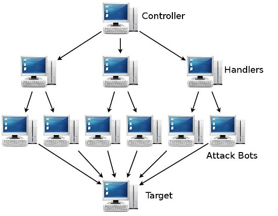 Network Attack Diagram Internet and Network Attacks Pinterest - use case diagram template