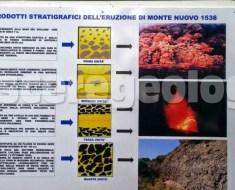 oasi montenuovo