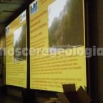 88° congresso società geologica italiana - SESSIONE SPECIALE TERREMOTO