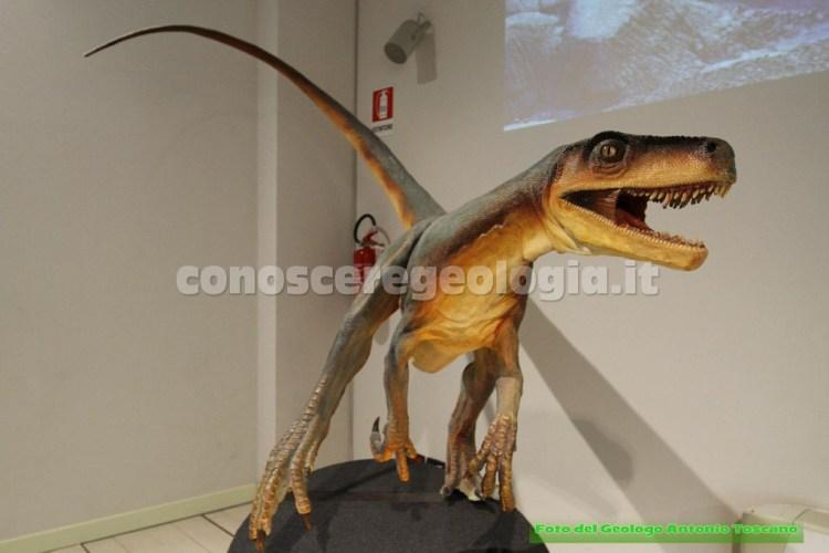 Ricostruzione dell'Herrerasaurus ischigualastensis (Triassico)