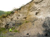 A quarry along the Provincial Road 228 near Sancha exposes the transition between the uppermost Doushantuo Formation (black, organic-rich shales known as 'algal coal') and the lowermost Dengying Formation made of bright, brittle dolostones. From http://www.sqfo.info, CC BY 2.0 Generic License