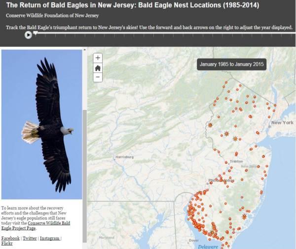 Bald Eagle Story Map