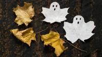 Halloween : une dcoration moins polluante