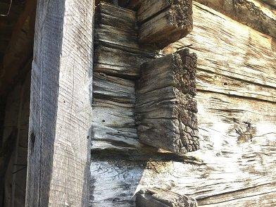 Resurse didactice despre lemn