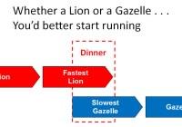 Consultantsmind - Lion or Gazelle