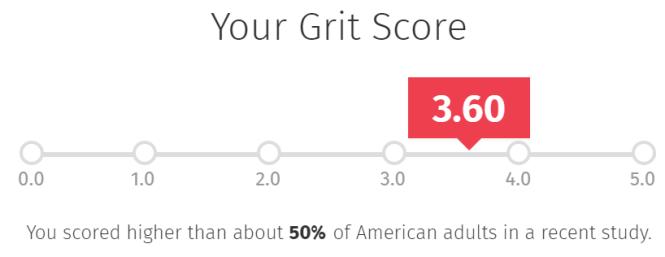 consultantsmind-grit-score