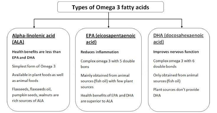 Everything you need to know about Omega 3 Types, Sources, Benefits