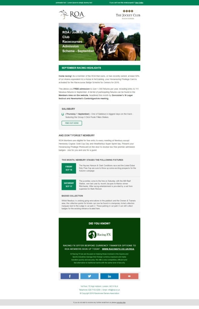 Responsive Email Templates for your Employee Newsletter 12 Must