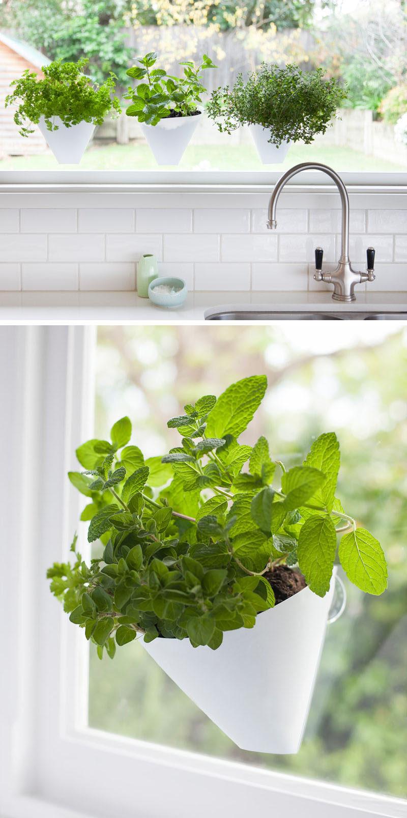 Fullsize Of Indoor Wall Herb Garden Ideas