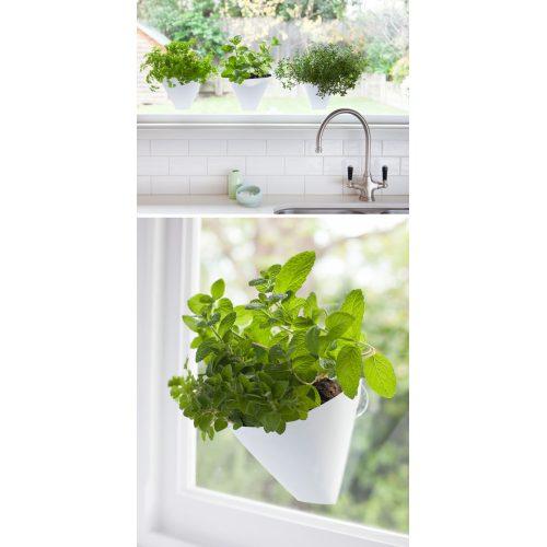 Medium Crop Of Indoor Wall Herb Garden Ideas